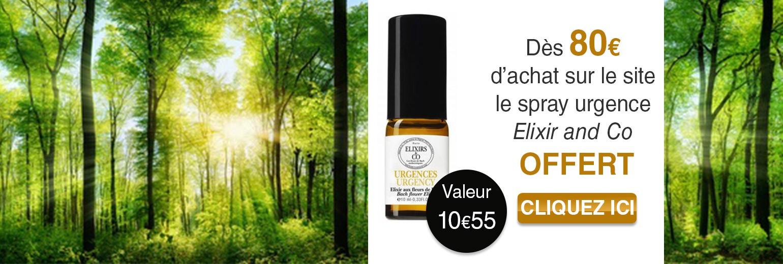 spray offert elixir & co dés 80€ d'achat