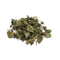 Menthe poivrée feuille 100g - Herboristerie de Paris tisane infusion Aromatic provence