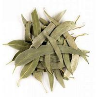 Eucalyptus feuilles longues entières bio 100g - Herboristerie de Paris eucalyptus globulus Aromatic provence