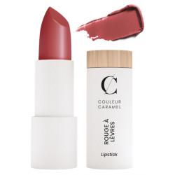 Rouge à lèvres satiné No 507 Terracotta 3,5gr - Couleur Caramel