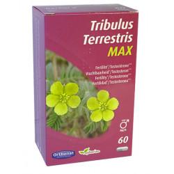 Bien être masculin Tribulus terrestris max 60 gélules - Orthonat Nutrition