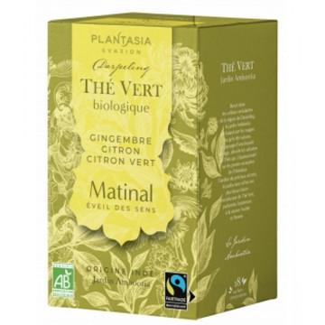 Thé vert bio Le Matinal au gingembre et citron - Plant Asia