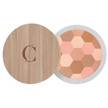 Poudre mosaïque No 232 teint clair - Couleur Caramel