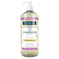 Shampooing cheveux normaux à la reine des prés d'Auvergne 1 L - Coslys Hygiène bio - Aromatic Provence