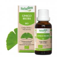 Ginkgo Biloba bio 50ml Herbalgem macérat mère de bourgeons bio de ginkgo mémoire Aromatic provence