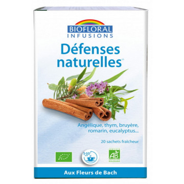 Infusion Défenses naturelles Hiver 20 sachets 24g - Biofloral