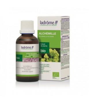 Extrait de plantes fraîches Alchémille bio