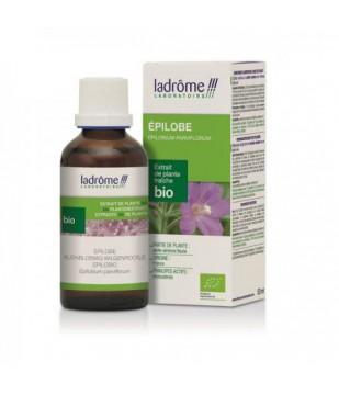 Extrait de plantes fraîches Epilobe bio - Ladrôme