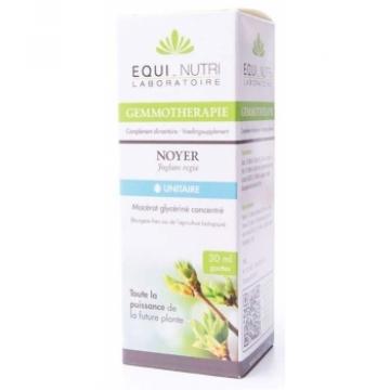 Macérat glycériné concentré de bourgeons bio Noyer - Equi-Nutri