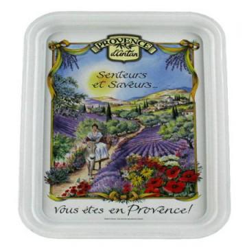 Plateau métal 1 tasse décor Provençale sur son âne