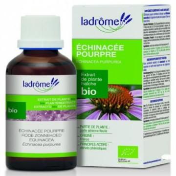 Echinacee pourpre Bio 100ml Ladrome