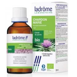 Extrait de plantes fraîches Chardon marie bio 50ml Ladrome