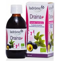 Boisson drainante Draina+ bio 250 ml - Ladrôme