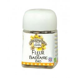 Badiane fleur bio 15g Provence d'Antan - Anis étoilé