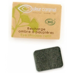 Recharge Ombre à paupières n°118 Gris Vert étoilé nacré 1.3g - Couleur Caramel