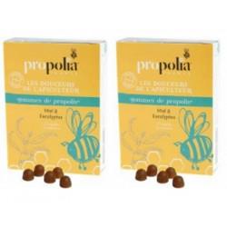 Lot de 2 boîtes de Gommes de Propolis Eucalyptus 2 x 45gr - Propolia