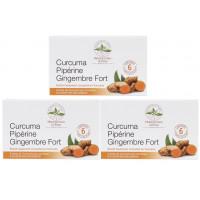 Curcuma pipérine gingembre fort lot de 3 boites de 60 comprimés - Herboristerie de Paris Ariomatic Provence