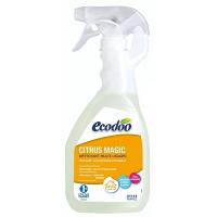 Nettoyant Désinfectant Citrus Magic - Ecodoo, Nettoyage sols et surfaces,  Entretien Maison Aromatic Provence