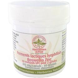 Ferments lactiques lyophilisés Boswellia Zinc MICI 60 Gélules - Herboristerie de paris