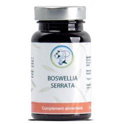 Boswellia serrata résine 90 gélules - Planticinal