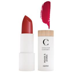 Rouge à lèvres Naturel Mat n°120 Rouge Sombre 3.5g - Couleur Caramel