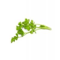 Ache des marais racine céleri tisane vrac 100gr - Herboristerie De Paris Aromatic provence