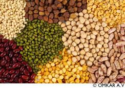 Proteines végétales