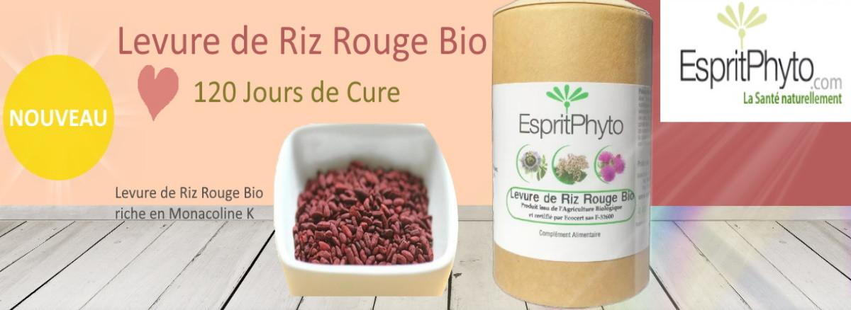 levure de riz rouge bio 4 mois de cure
